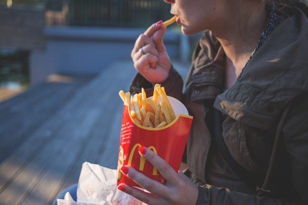 close-up-coat-eating-139681 (1).jpg